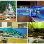 Фотообои на кухню возле стола: фото, идеи оформления, дизайн